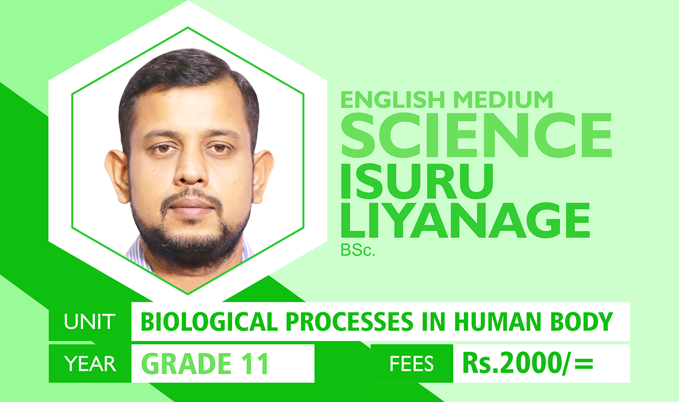 Biological Processes In Human Body - Grade 11 (Science)